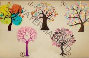 Разберете вашия житейски път, като изберете дърво
