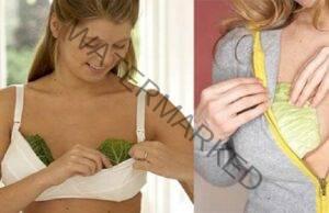Жените слагат зелеви листа на гърдите си, причината ще ви зарадва!