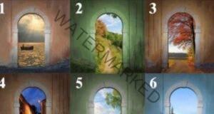 Изберете портал и разберете по кой път да продължите в живота!