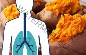 Сладкият картоф се бори с емфизема и рака на белия дроб