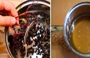 Средство с бъз и мед: най-добрият лек при настинки