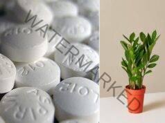 7 необичайни приложения на аспирина, за които трябва да знаете