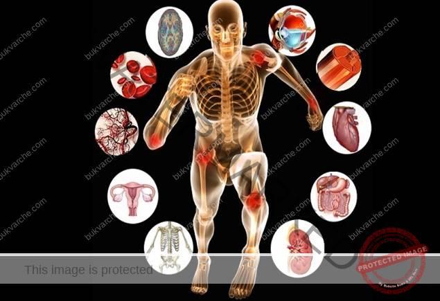 Интересни факти за тялото ни, за които не знаете