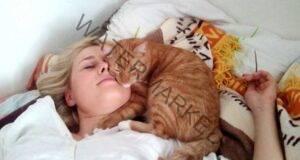Народни поверия за котките - наистина ли притежават лечебна сила?
