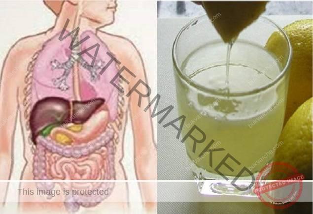 Прочистване на организма от токсини и излишната вода