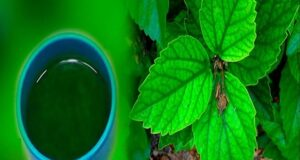 Регулиране на кръвната захар с естествени средства