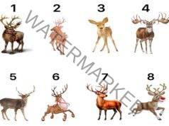 Предсказание за новата година. Изберете един елен!