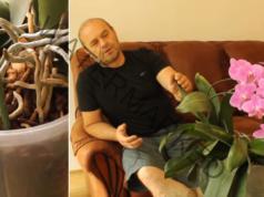 Грижи за орхидеята, които ви гарантират обилни цветове