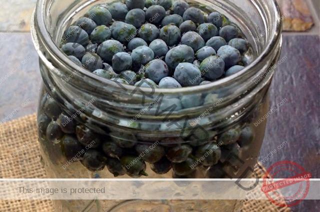 Лек от плодове на хвойна срещу вируси и бактерии