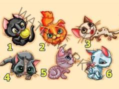 Тест с котка: изберете една и разберете каква личност сте!