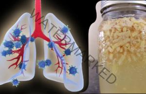 Ферментирала джинджифилова лимонада: напитка за енергия