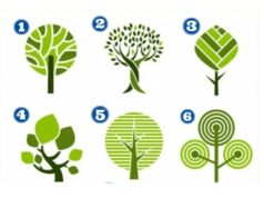 Тест с дърво: Разберете какво е вашето ниво на тревожност!
