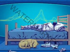 Изключването на рутера преди лягане е важно за здравето ви