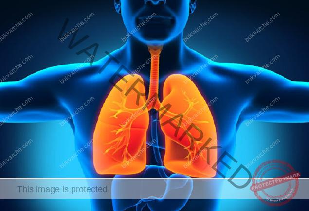 Елиминиране на инфекциите и кашлицата с тези мощни билки