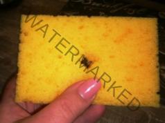 Полезен трик в кухнята - малка дупка в гъбата за миене на съдове