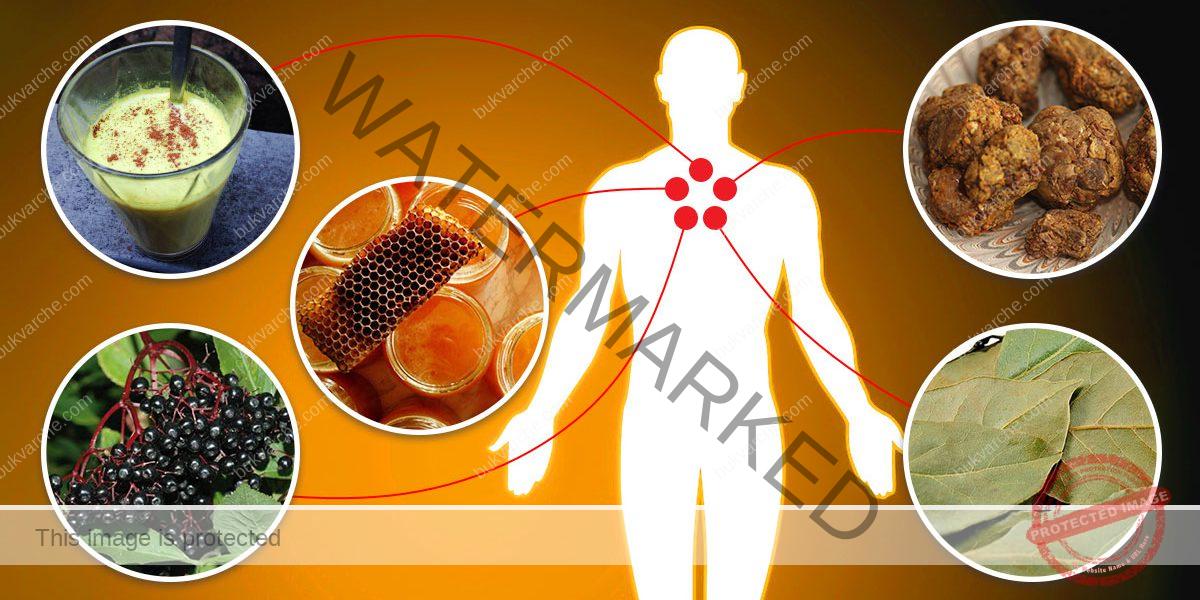 Естествени антибиотици - вирусите и патогените нямат шанс