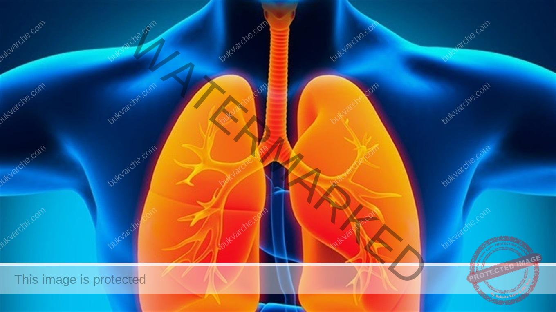 Как да разпознаете пневмонията? Не пренебрегвайте тези симптоми!