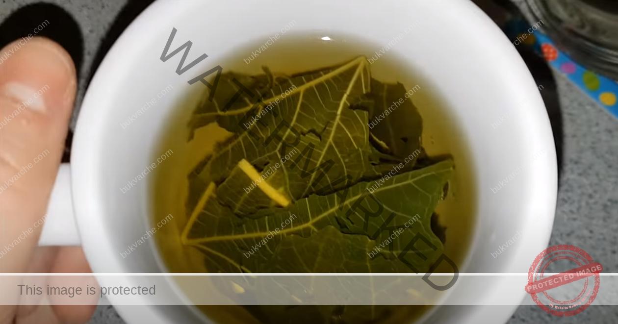 Чай от смокинови листа за лечение на диабет. Рецепта