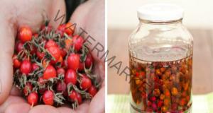 Полезни свойства на шипките: съдържат голямо количество витамин С