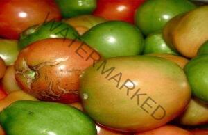 Сос от зелени домати - отлична добавка към месото