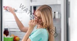 Срещу миризми в хладилника - кафе, пакетчета чай и овес