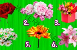 Любимото ви цвете разкрива черти от характера ви