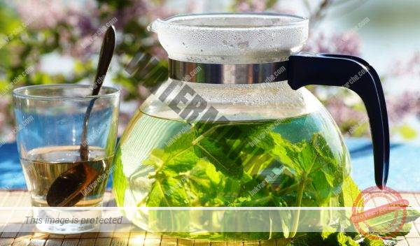 Напитка за добър метаболизъм и за отслабване