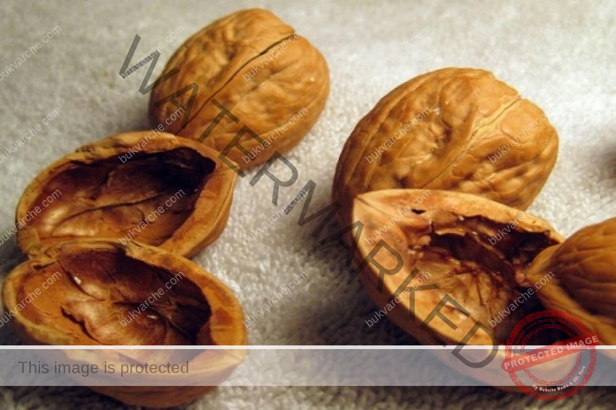 Ползи от ореховите черупки - за здраве и красота
