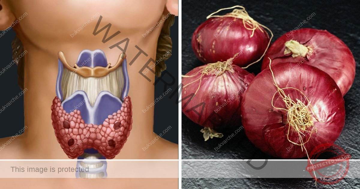 Компрес за щитовидната жлеза с лук. Резултатът няма да се забави