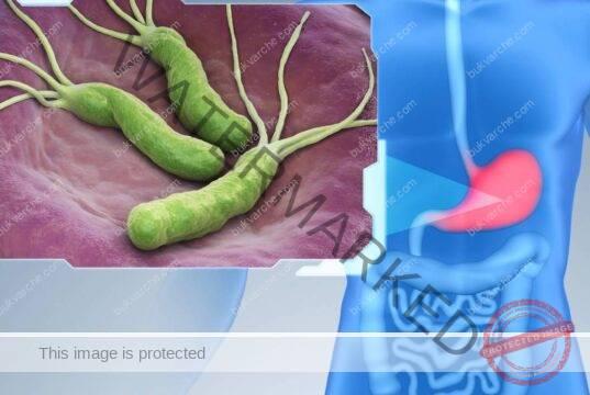 Средство срещу хеликобактер пилори с броколи