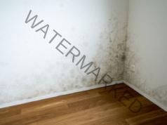 Домашен влагоуловител: нужни са ви няколко съставки