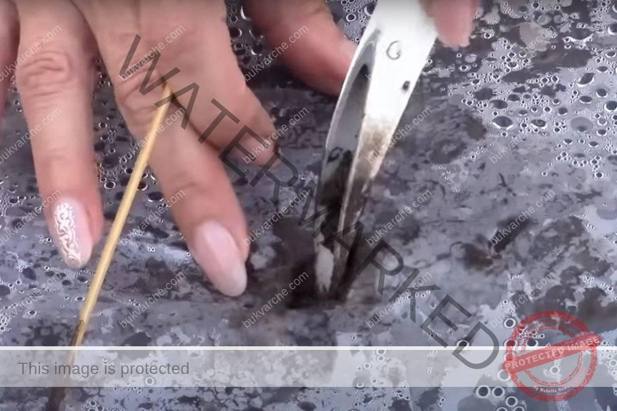 Правилно засаждане на краставиците за обилна реколта