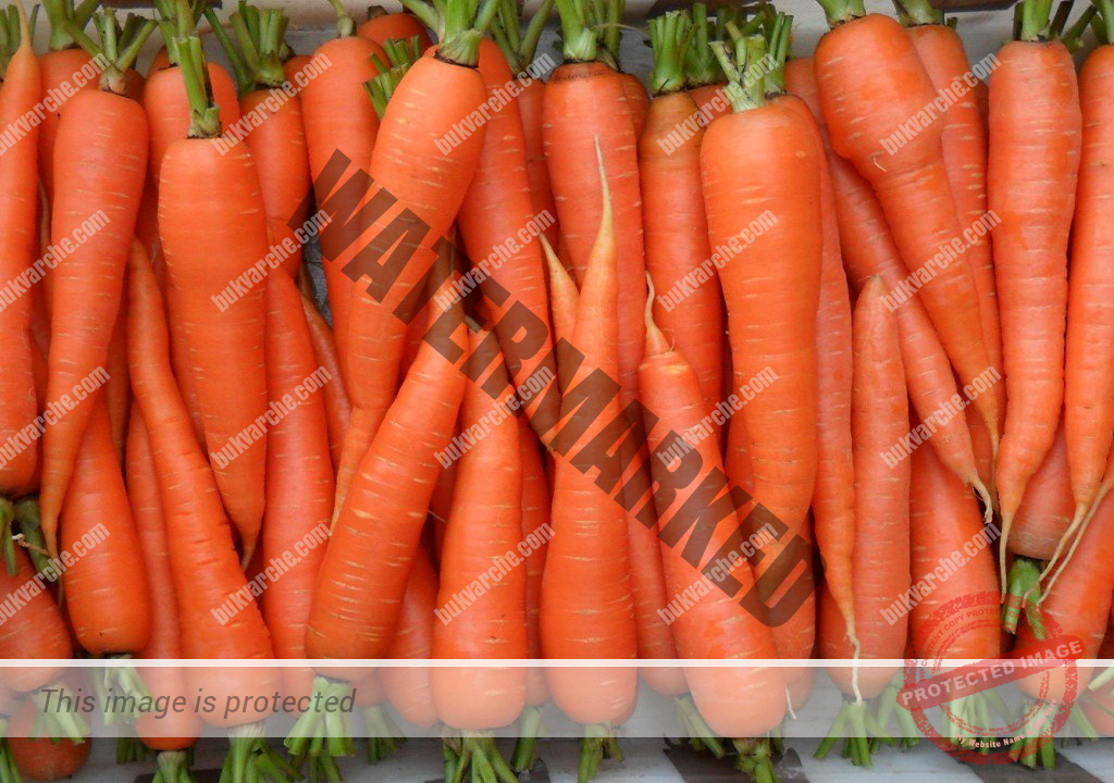Как се сеят морковите, за да получите богата реколта?