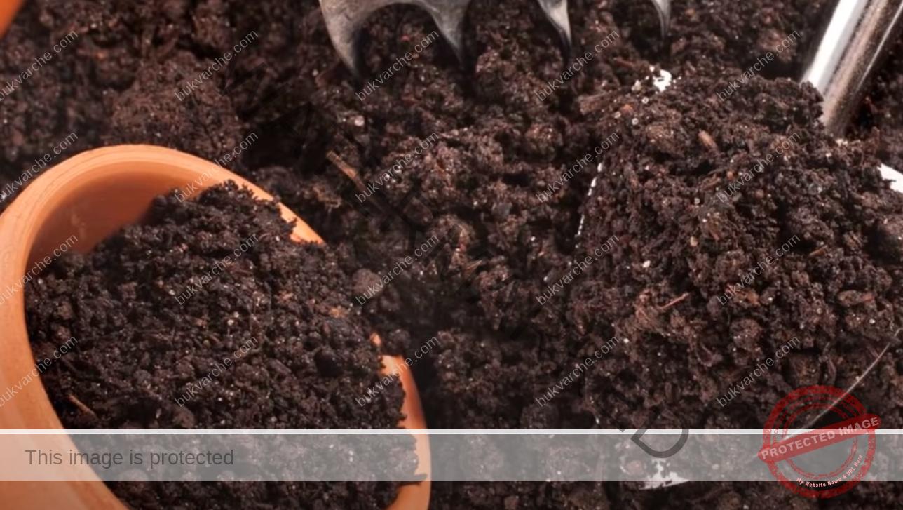 Естествен тор за разсад, който ще ви осигури богата реколта
