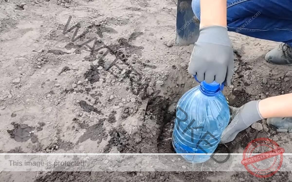 Направете си капково напояване от пластмасова бутилка!