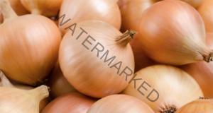 Дълготрайна реколта от лук - полезни съвети и трикове
