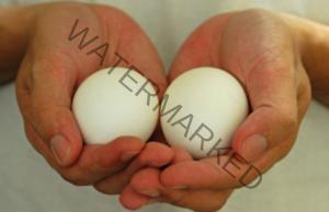 Редовната консумация на яйца подобрява здравето ви