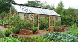 Соден разтвор в градината: ето за какво е полезен