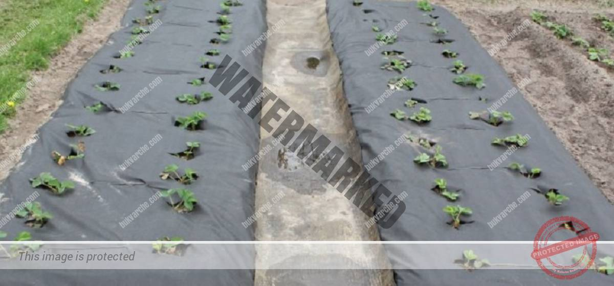 Ефикасно средство срещу плевелите в градината