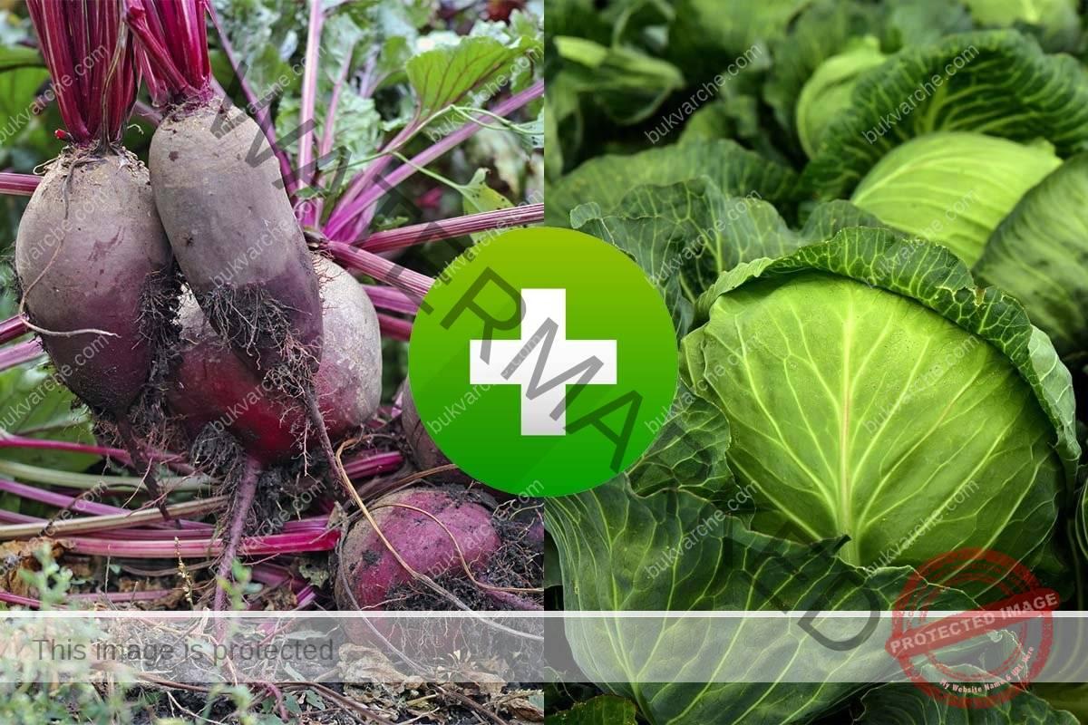 Съвместими зеленчуци - кои растения се обичат и кои не?