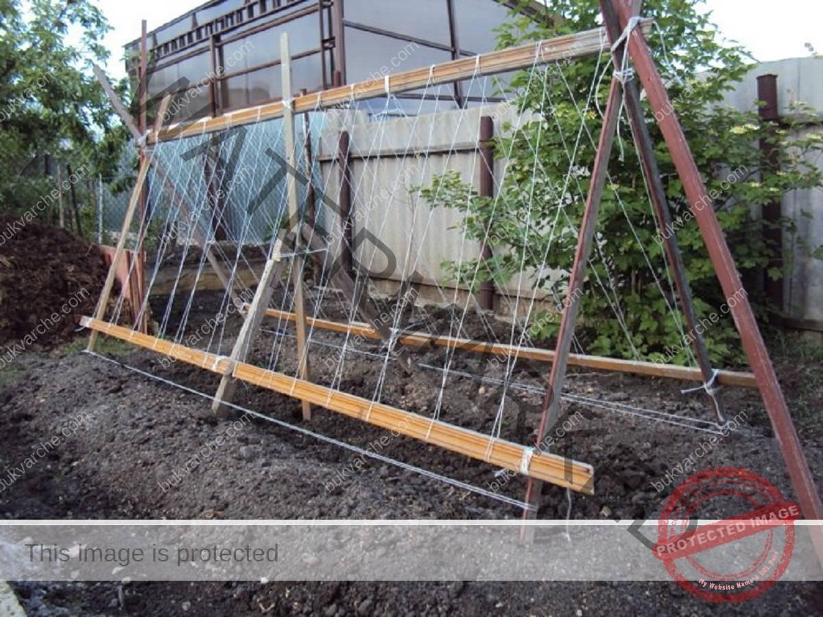Конструкции за краставици за по-голяма реколта