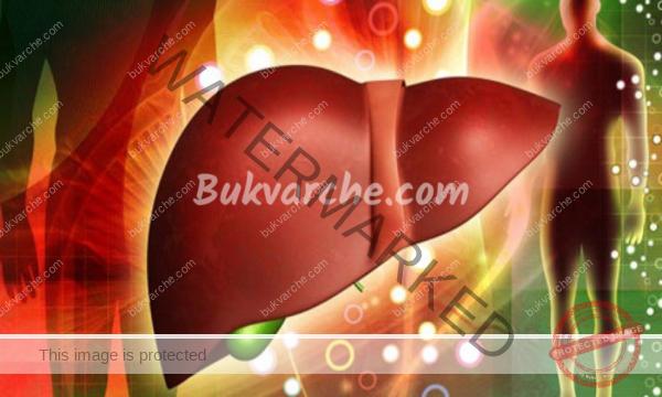 Симптоми на чернодробно заболяване, които тялото изпраща