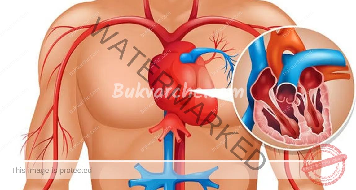 Поддържане на артериите чисти с тези две средства