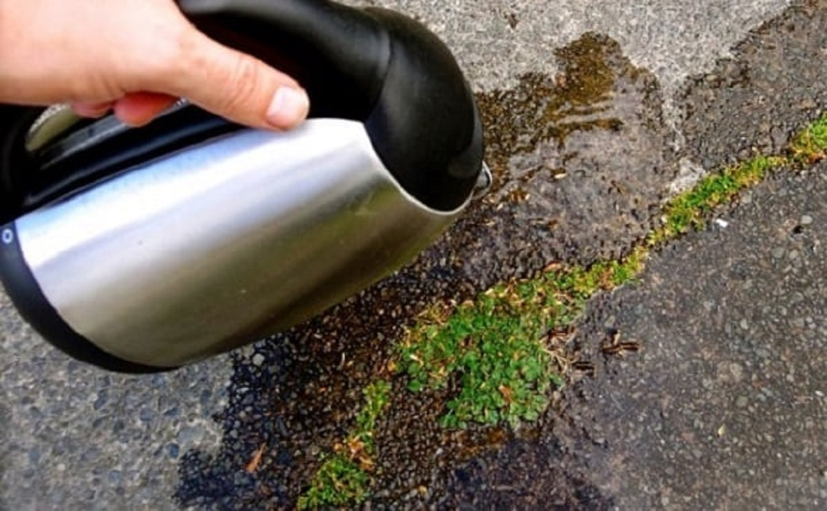Унищожаване на плевелите с естествени средства