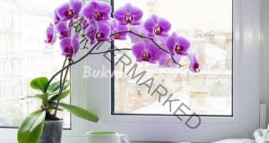 Естествен тор за орхидеи, който им осигурява всички вещества