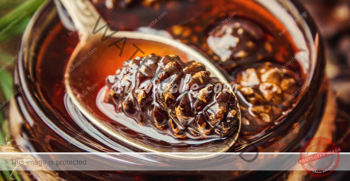 Мед от шишарки за здравето на цялото семейство