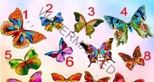 Какво желае душата ви в този момент? Изберете пеперуда!
