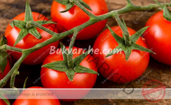 Разтвор на мая за здрава и богата реколта от домати