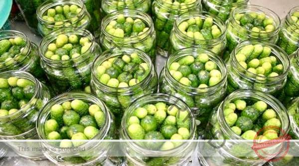 Рецепта за мариновани краставички – хрупкави и много вкусни