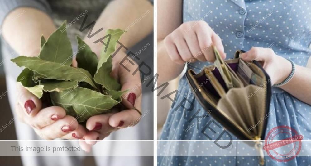 Ритуал с дафинов лист за привличане на пари и късмет